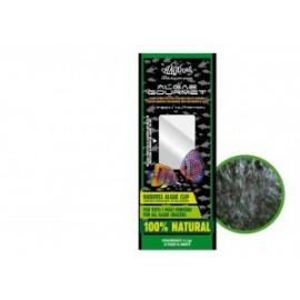 Algues-algae gourmet pour tous poissons herbivores 100% naturel