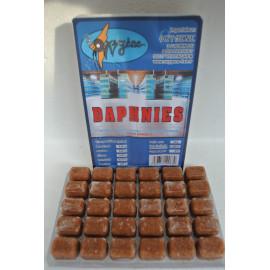 Daphnie blister 100 grs (waterflea)