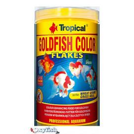 Goldfish color paillettes boite de 100 ml