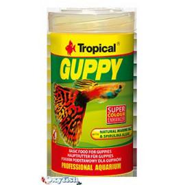 Nourriture guppy boite 100 ml