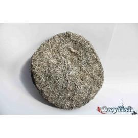 Dalle granit ronde diam. 25 a 35 cm