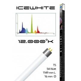 Tube t5 12000° icewhite 54 watt- 1149 mm