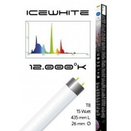 Tube t8 12000° icewhite 15 watt- 435 mm