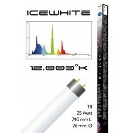 Tube t8 12000° icewhite 25 watt- 740 mm