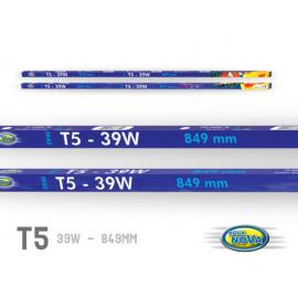 TUBE T5 TROPIC BLANC 849 mm 39W  10 000K