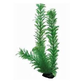 Plante plastique sur socle cabomba verte 50cm