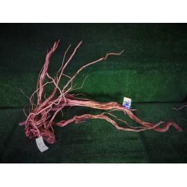 Racine naturelle DRAGON AZALAE 80-110cm