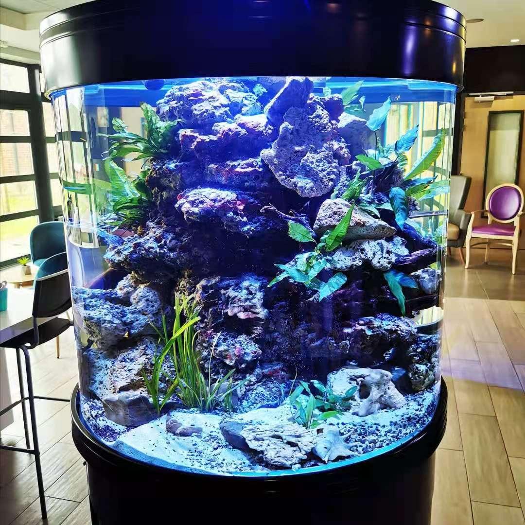 entretien aquarium pro
